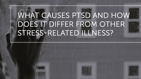 What Causes PTSD and How Does It Differ From Other Stress-Related Illness
