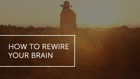 How to Rewire Your Brain