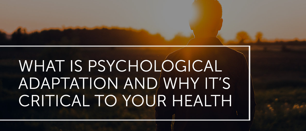 dal july2019 blog header psychologicaladaptation