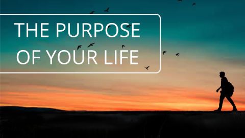 What is the purpose of your life?