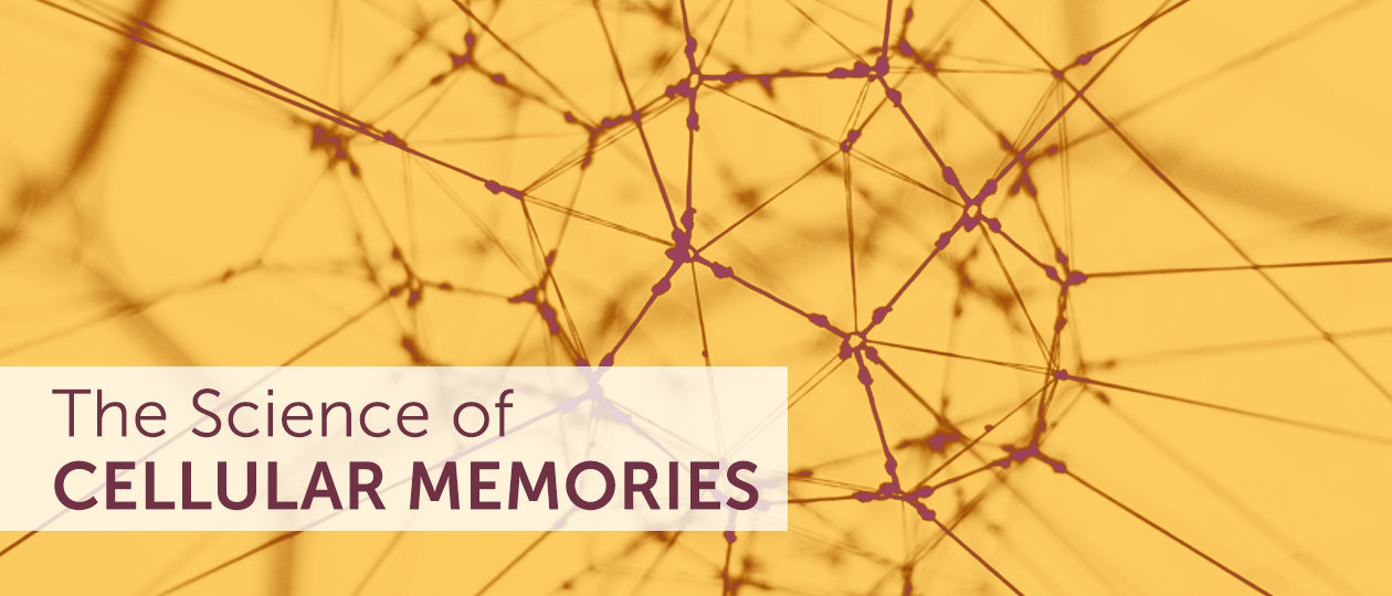 thescienceofcelluarmemories header